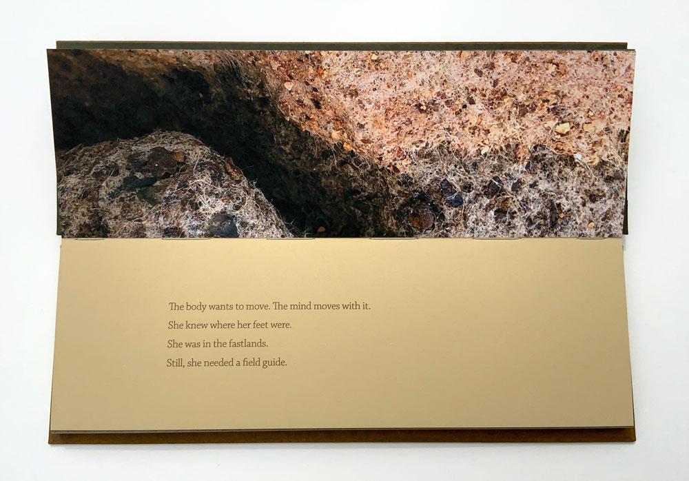 Manske & Wylde_From This Earth_010
