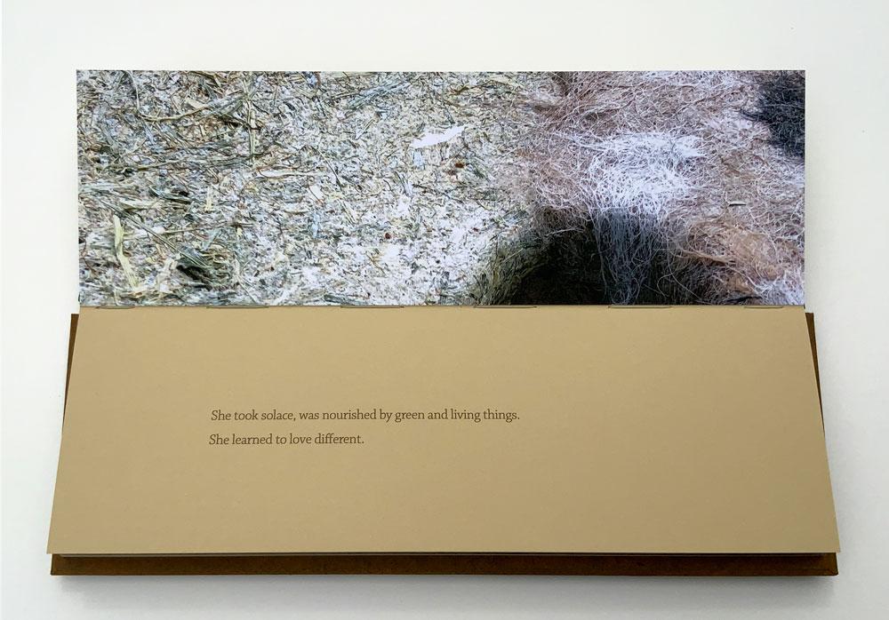 Manske & Wylde_From This Earth_022